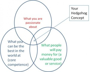Hedgehog Concept Venn Diagram